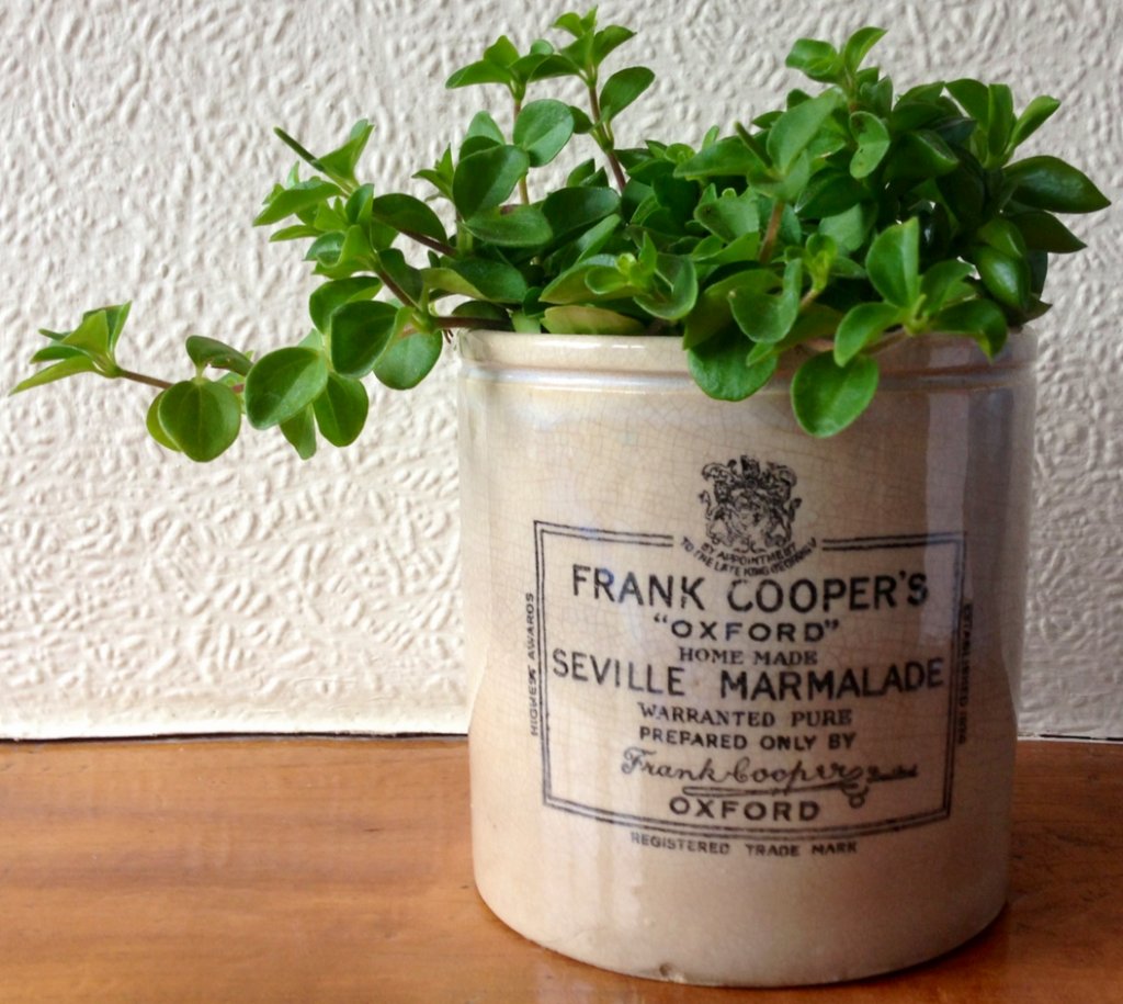 Frank Cooper