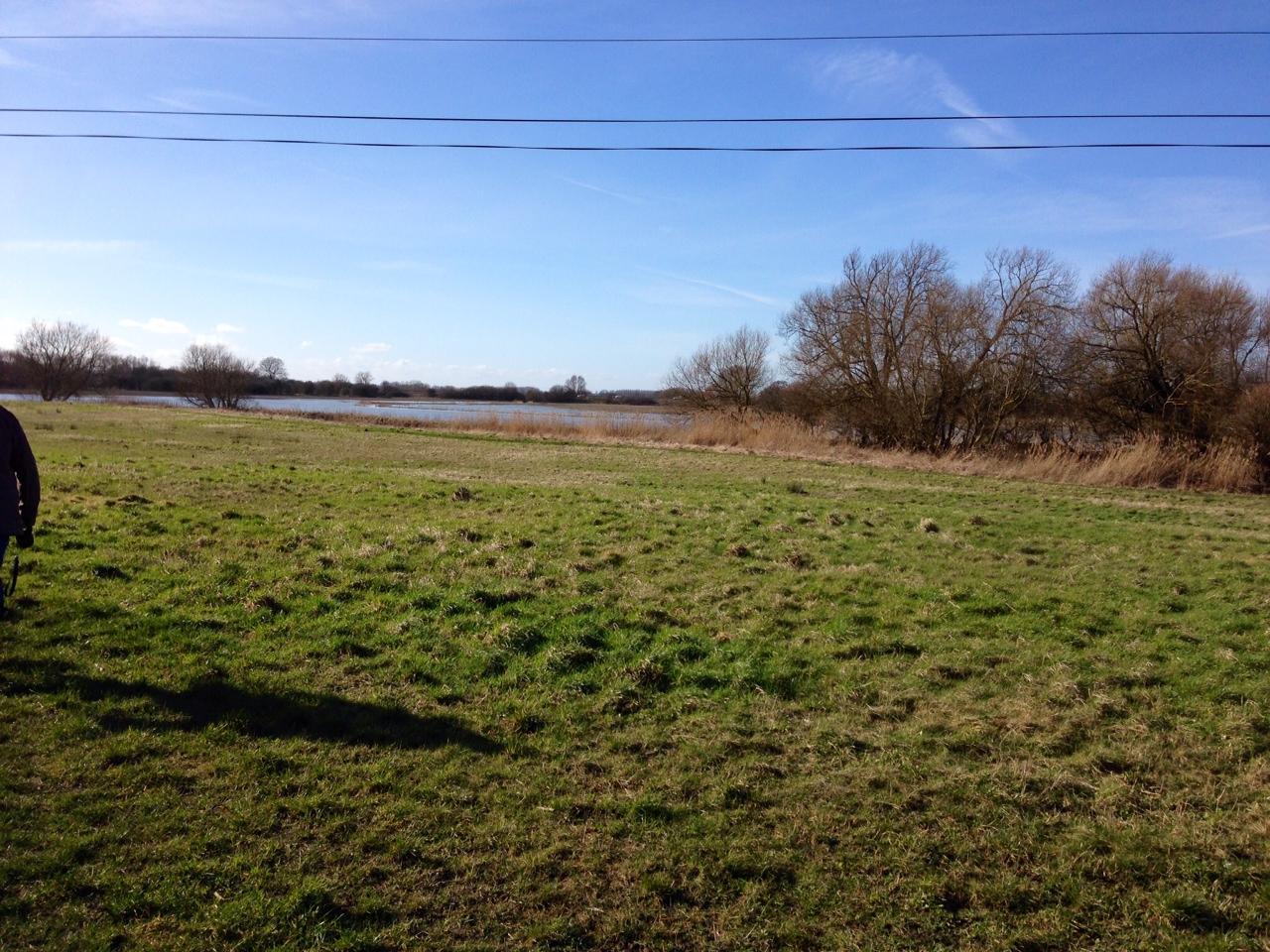 Abingdon Fields
