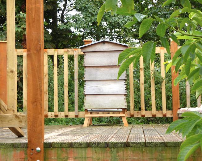 Hogacre Bees