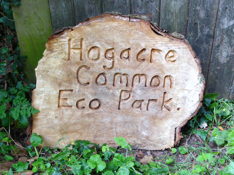 Hogacre Common Park