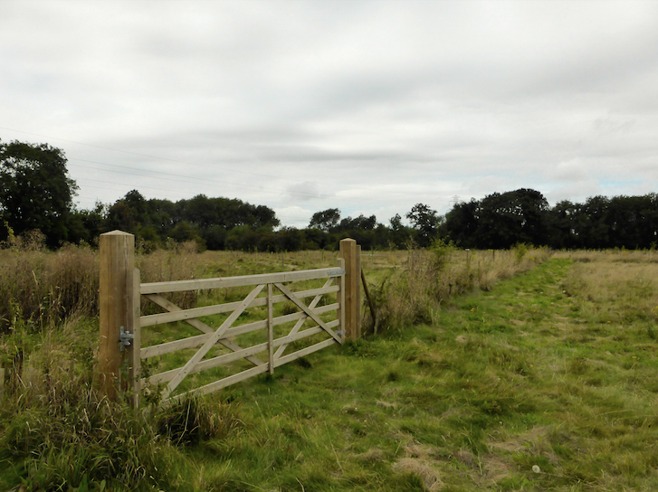 Hogacre Pastures