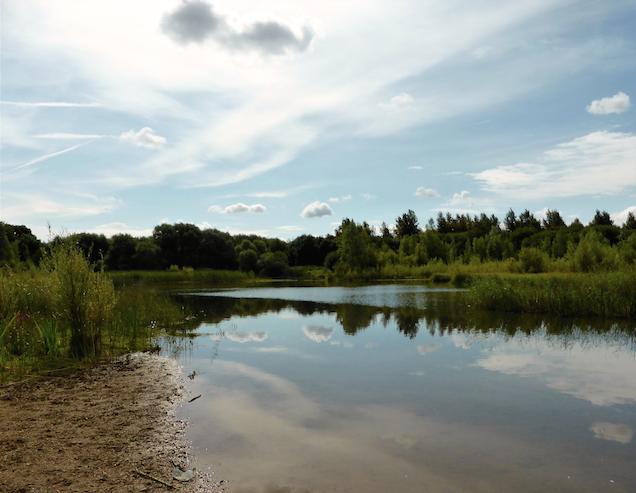 Abingdon Oasis