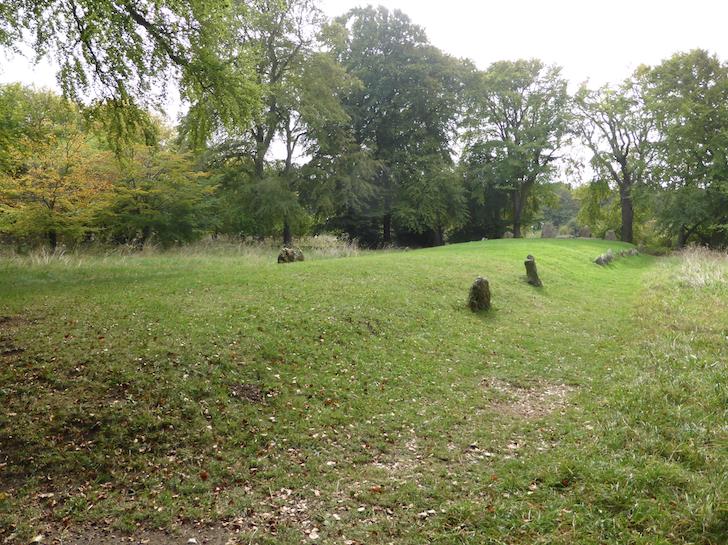 Dog Walks Oxfordshire