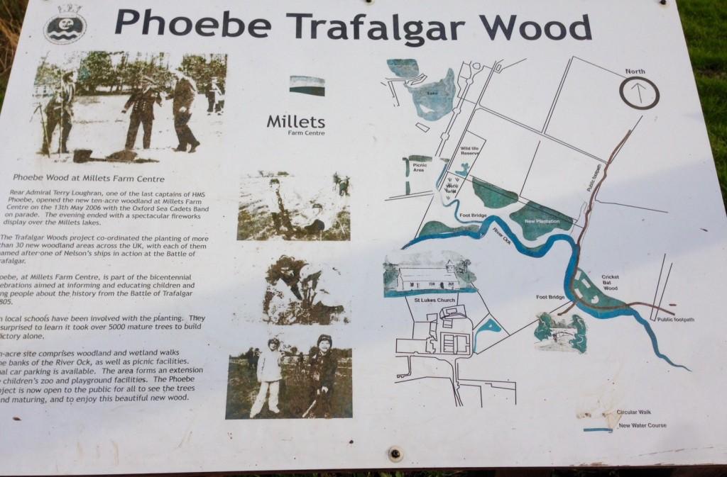 Phoebe Woods
