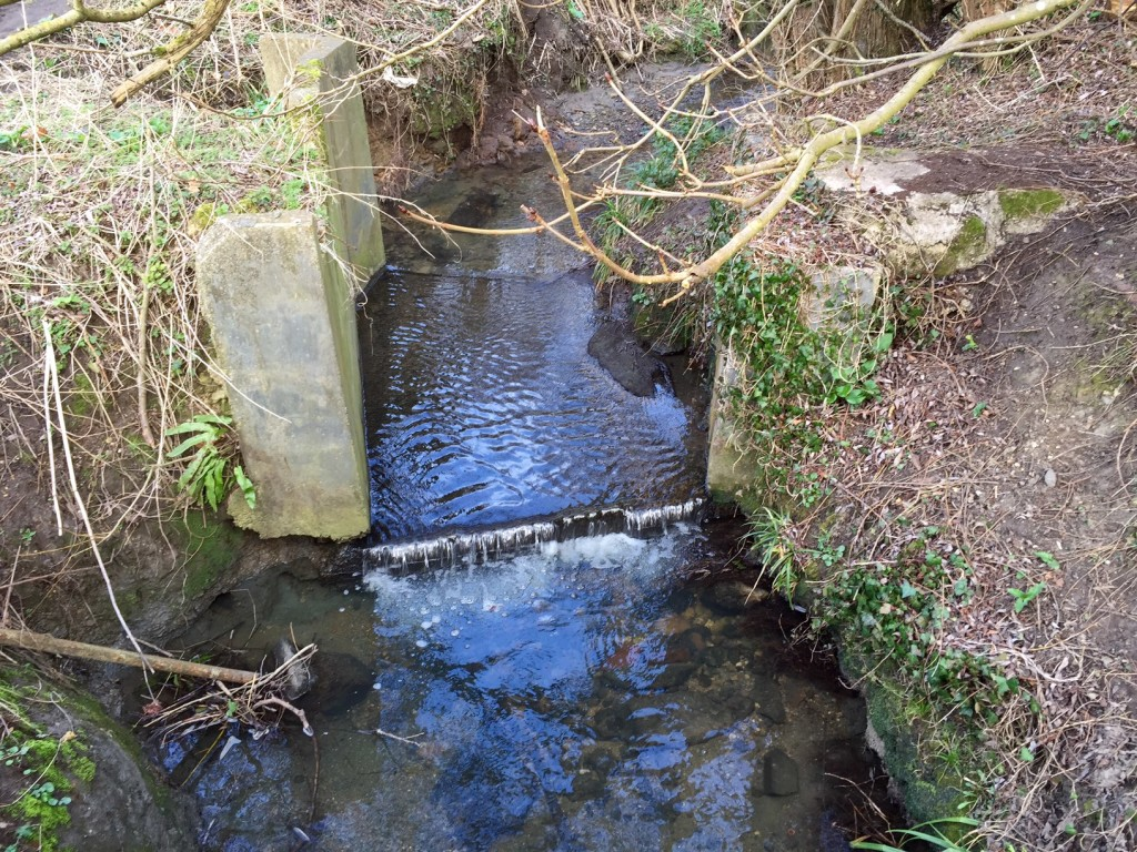 Lye Valley Brook