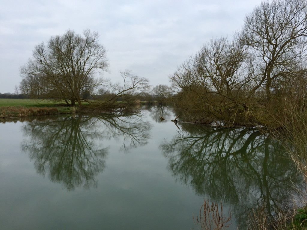 The Thames at Farmoor