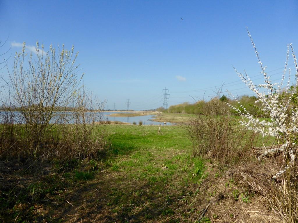 Oxfordshire Windrush Path