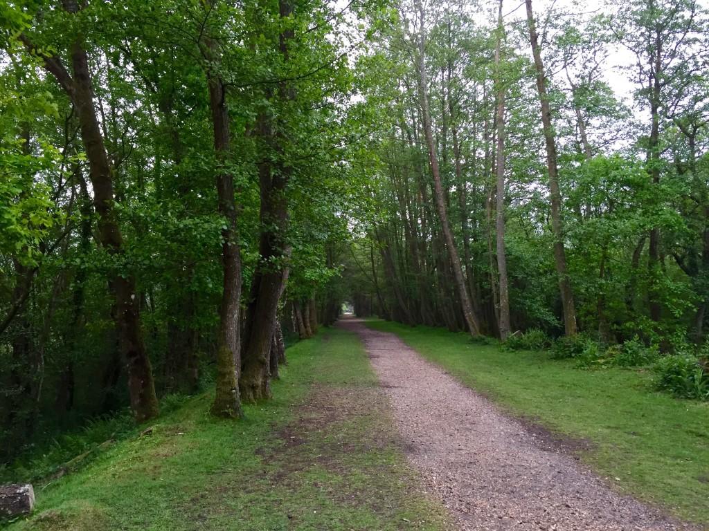 Old railway walk
