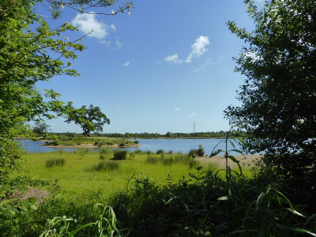 Tar Lakes