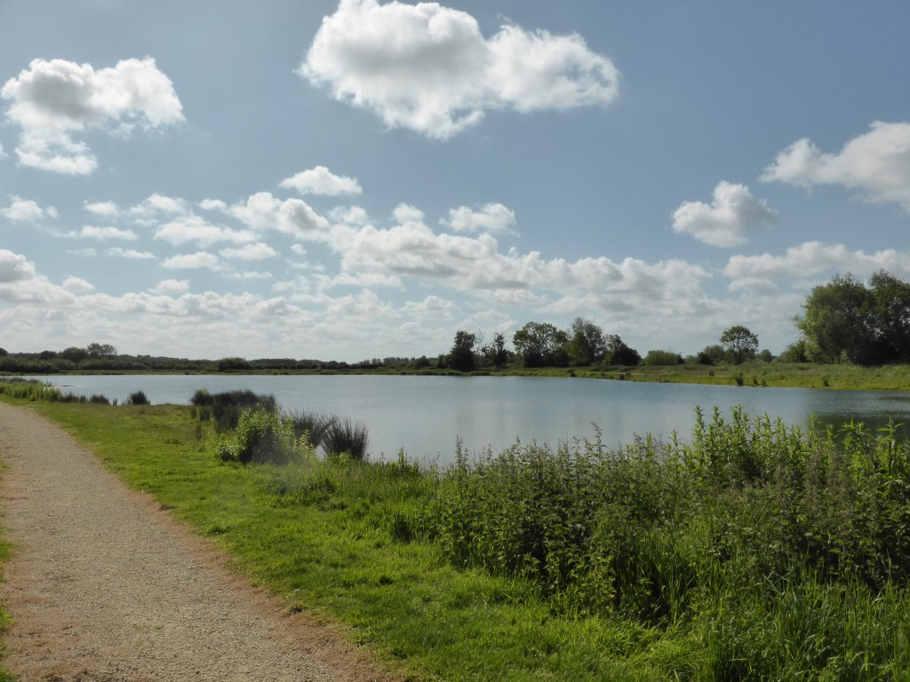 Tar Lakes at Witney