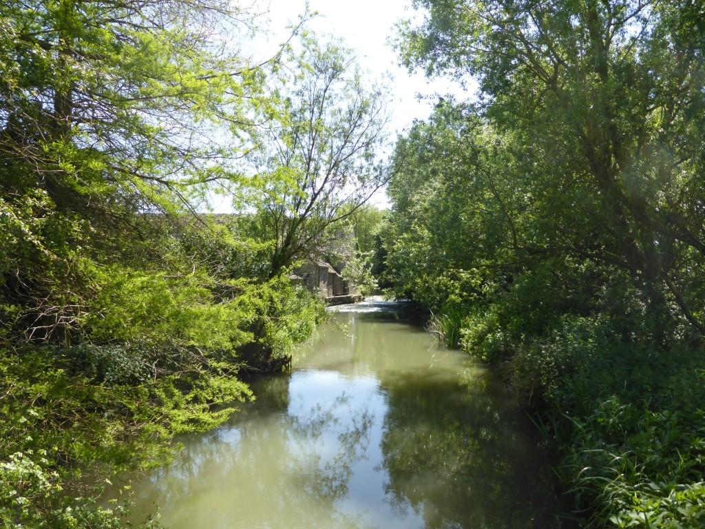 Tar Lakes walk