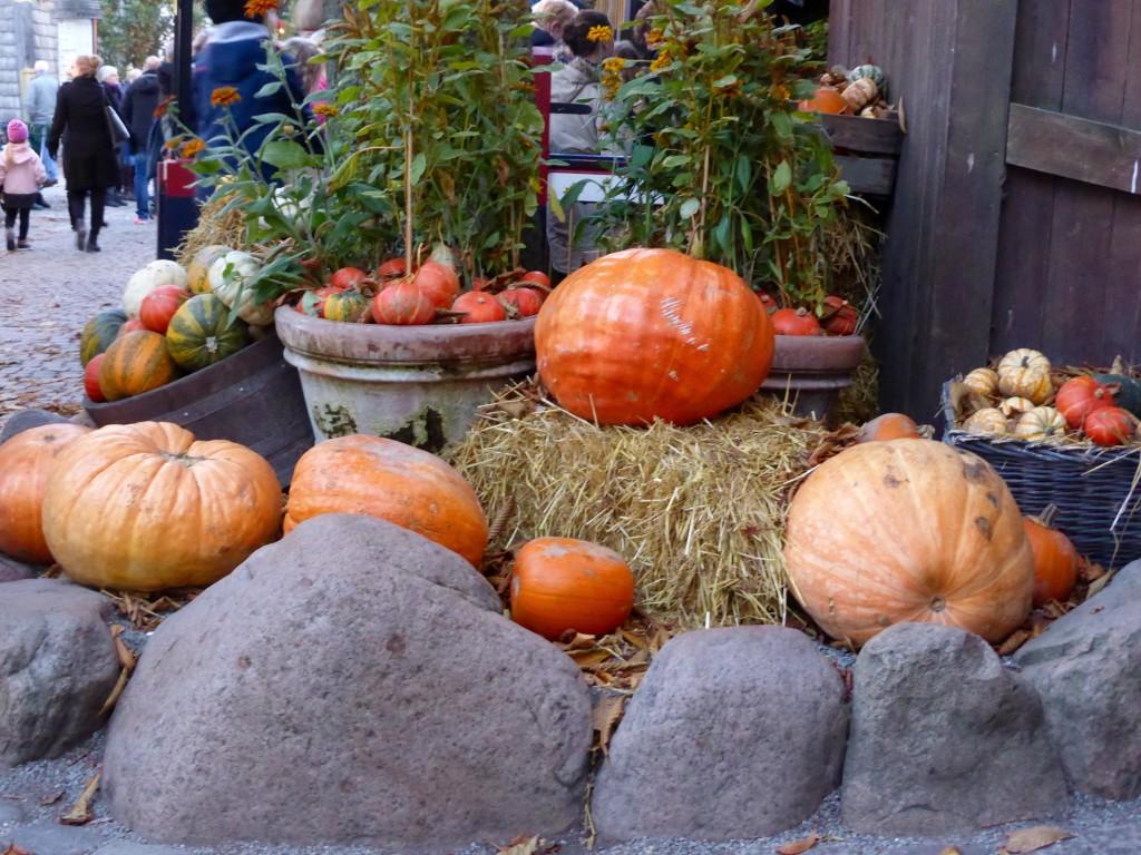 Pumpkins at Tivoli