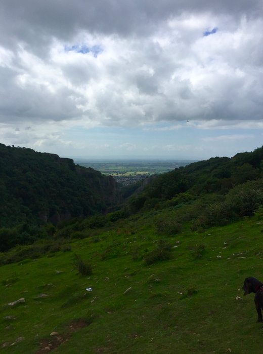 Cheddar Gorge view