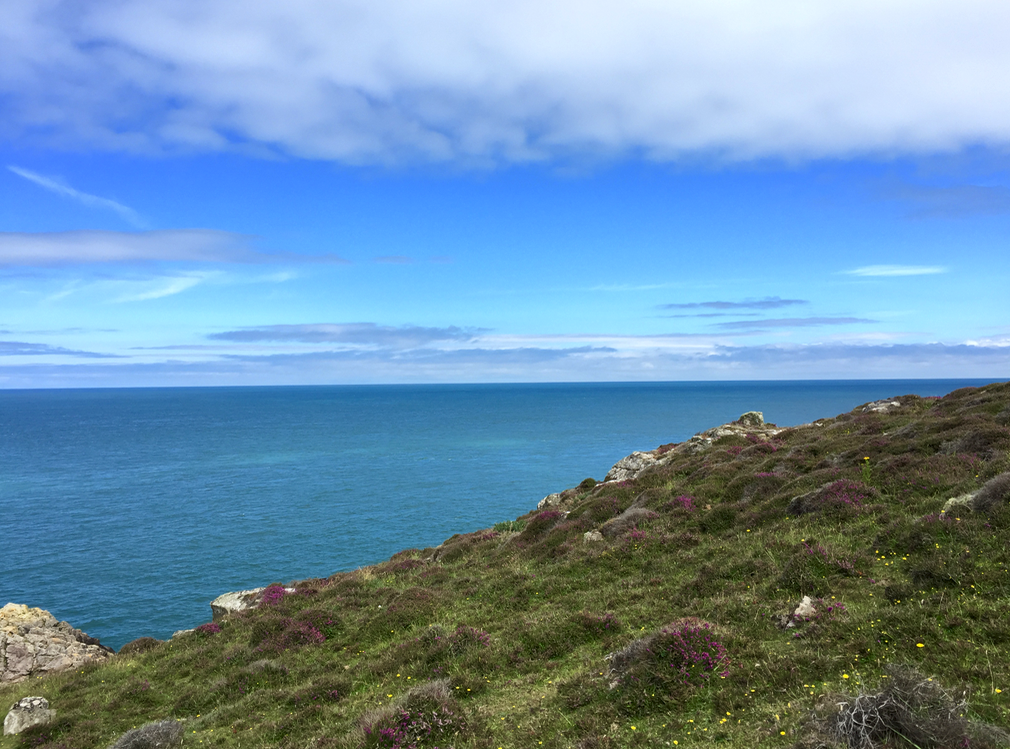 Walking the Pembrokeshire coastal path