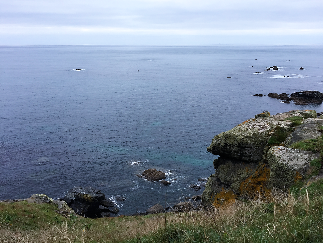 lizard coast walk