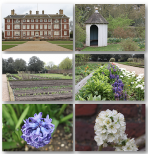 Ham House Collage