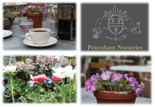 Petersham Nursery Collage