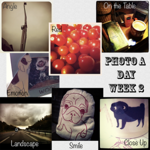 Photo a Day - Week 2