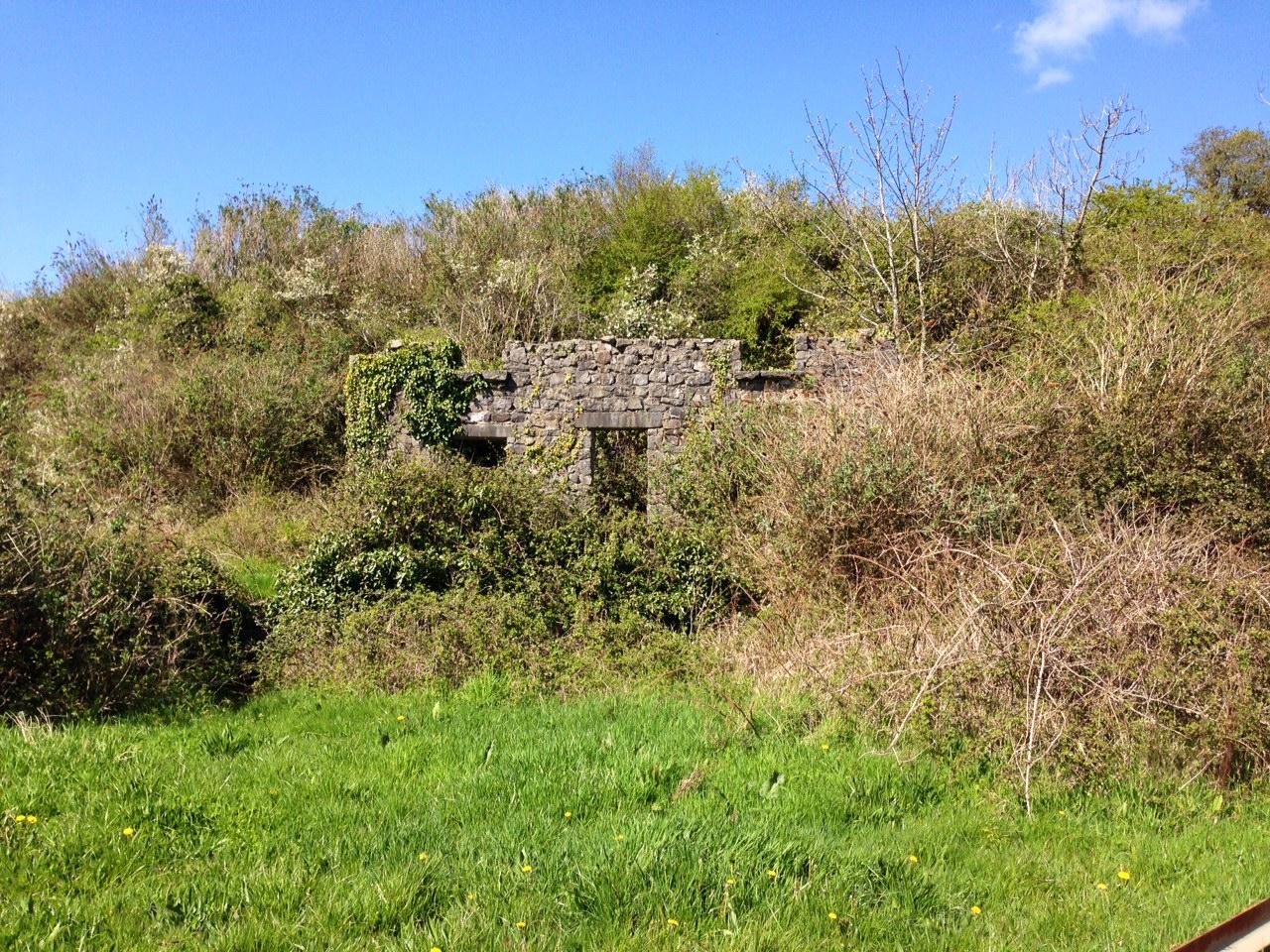 Mill Pond Walk