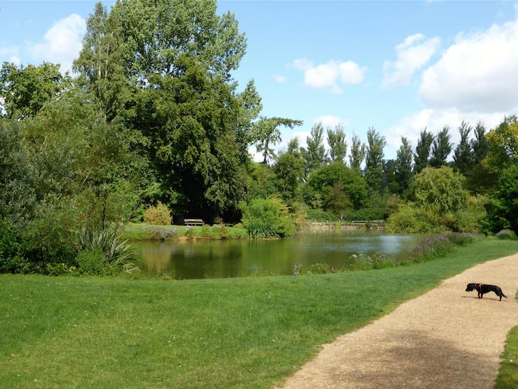 Univeristy Parks