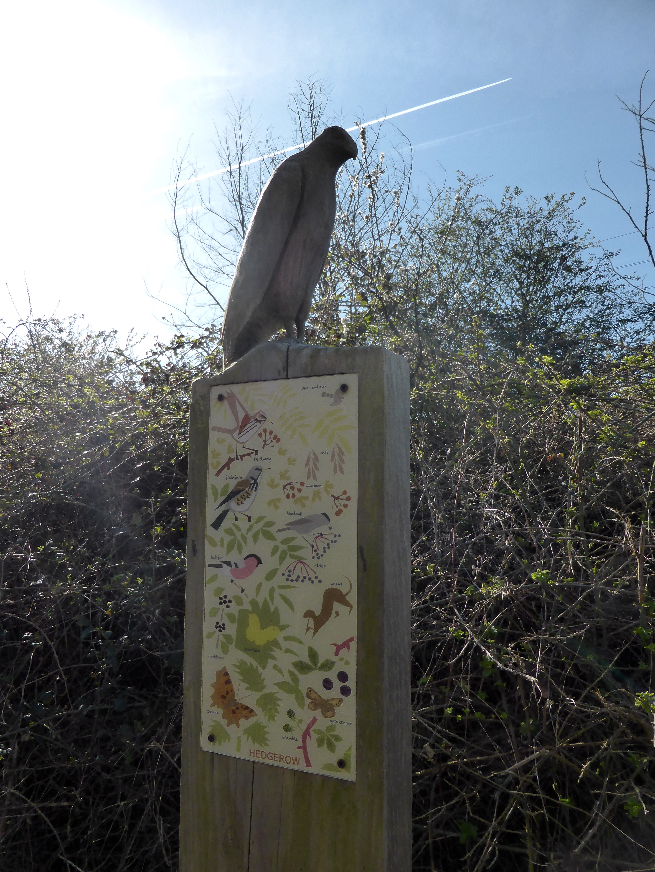 Stratfield Brake Nature Reserve
