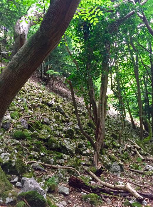 The Cheddar Gorge Walk